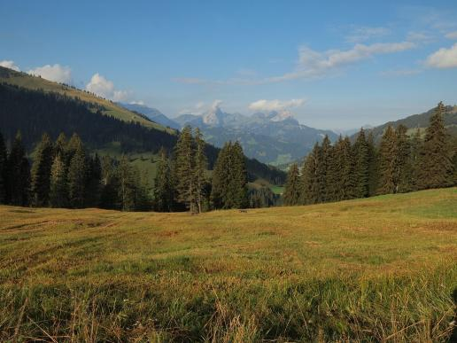 Blick Richtung Gstaad