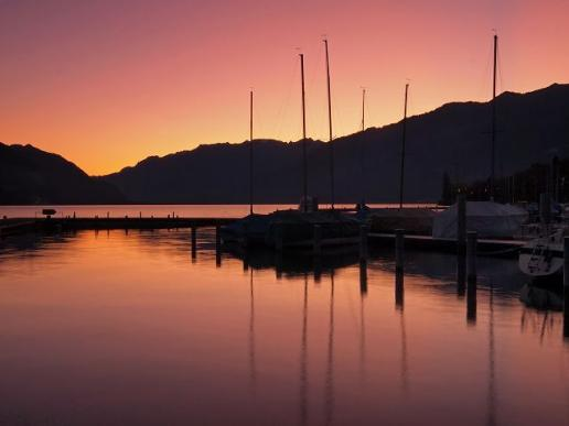 Morgenrot am Thunersee