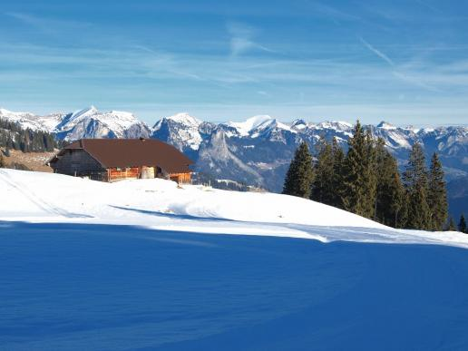 Simmental im Winter