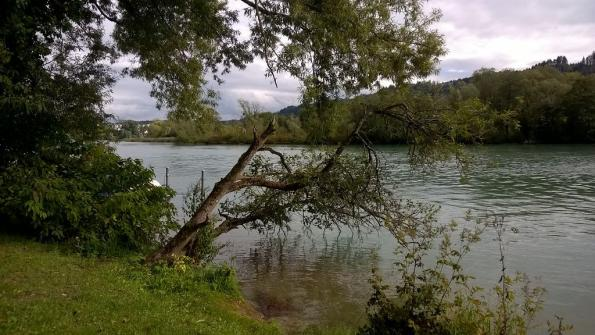 Wohlensee BE