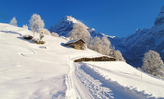 Winteridylle in Grindelwald
